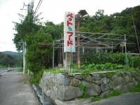 2017-10-10カラ&ミケ02