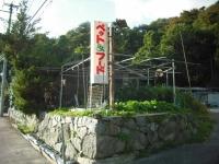 2017-10-17カラ&ミケ03