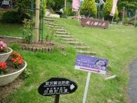 2017-06-11花巻温泉のバラ園267