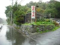 2017-10-23カラ&ミケ03