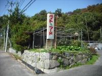 2017-10-24カラ&ミケ03