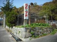 2017-11-07しろぷーうさぎ03