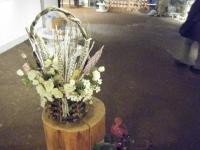 2018-01-14花と泉の公園ベゴニア館12
