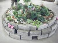 2018-01-14花と泉の公園ベゴニア館105