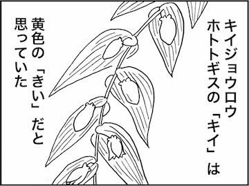 kfc01383-2