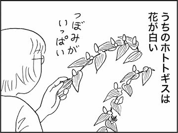 kfc01383-5
