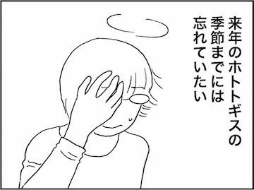 kfc01383-8