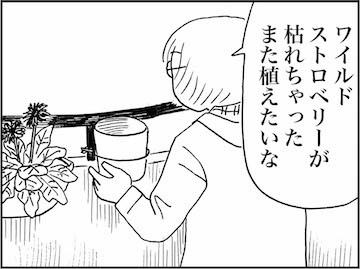 kfc01412-1