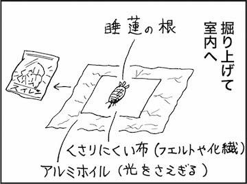 kfc01415-6