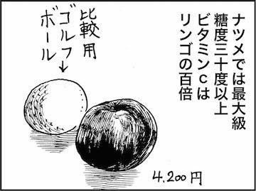 kfc01420-4
