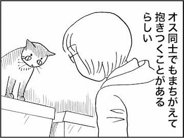 kfc01429-8
