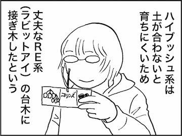 kfc01439-6