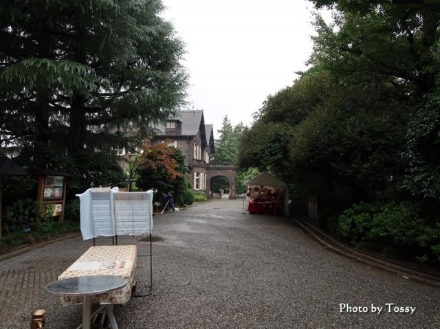 古河庭園アプローチ