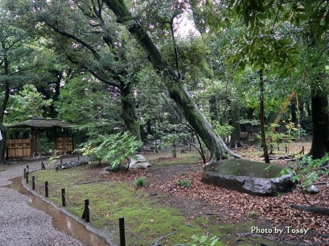 古河邸日本庭園