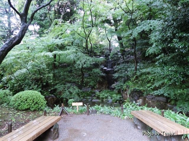 古河庭園 瀧