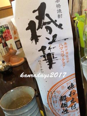 20170609_橙華