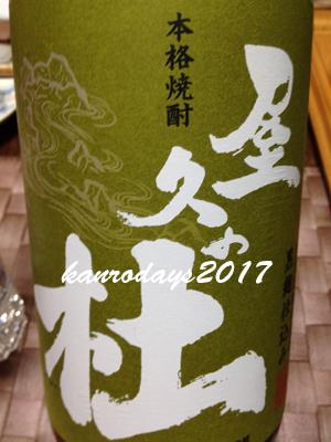20170816_屋久の杜