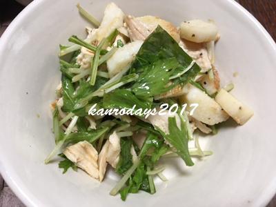 20171016_長芋と鶏肉のサラダ