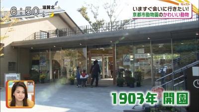 20171101-193959-493.jpg