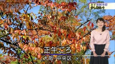 20171101-213604-119.jpg