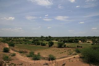 Kanchi 294.jpg