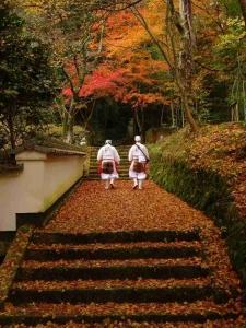 荘厳寺 秋色に染まる 加藤誠司 2017フォトコン優秀賞