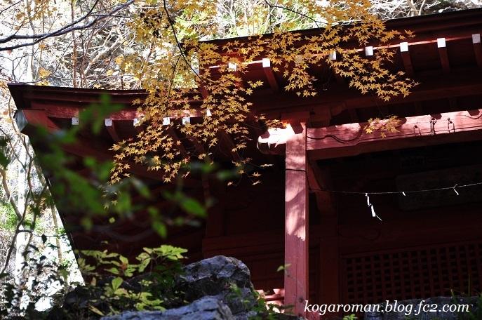 蓬莱山の紅葉7