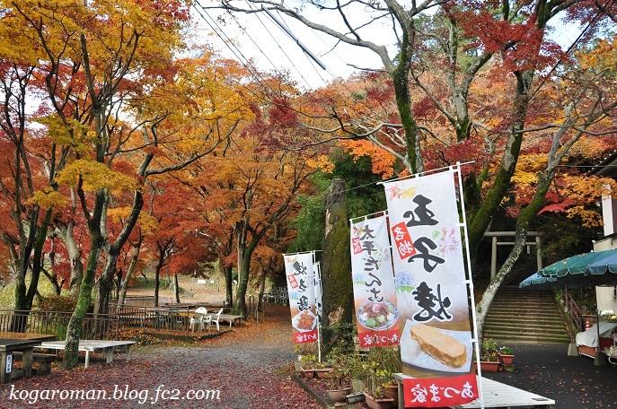 太平山の紅葉3