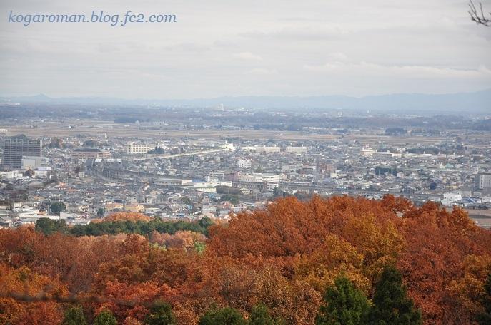 太平山の紅葉10