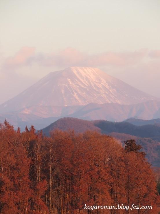 遊水地から望む山々4