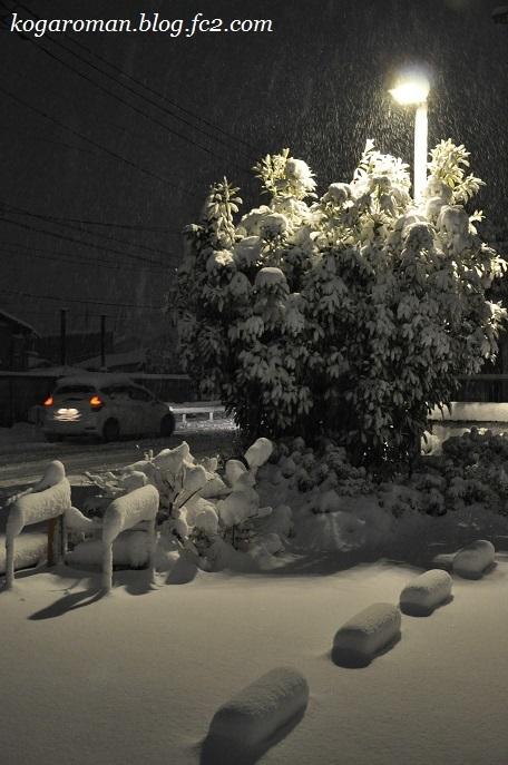 2018年1月22日の大雪3
