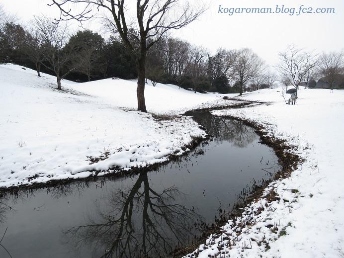 古河総合公園の雪3