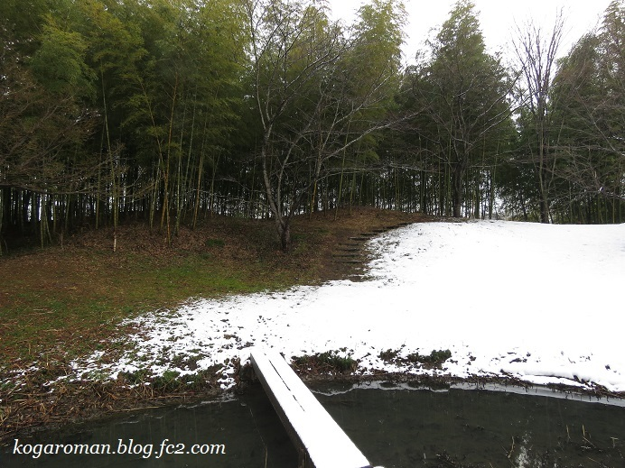 古河総合公園の雪4