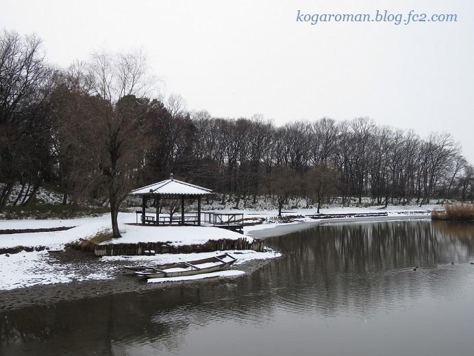 古河総合公園の雪5