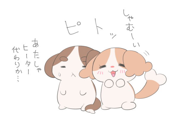 IMG_kyansizu1.jpg