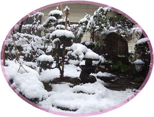 初雪002