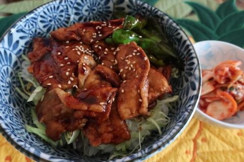 日本食研 豚バラ蒲焼丼タレ (2)_R