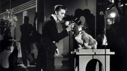 elvis-hound-dog-steve-allen-show-1956.jpg