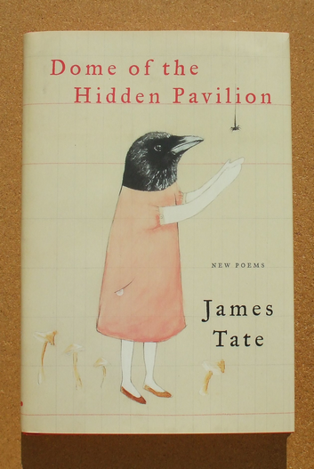 james tate - dome of the hidden pavilion