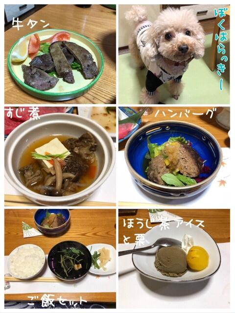 fc2blog_2018111922313190d.jpg