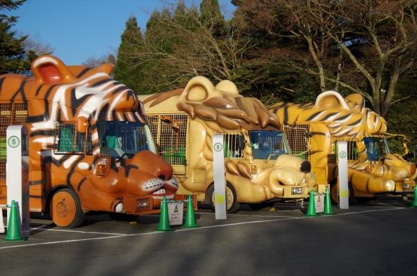 富士サファリ 周遊バス