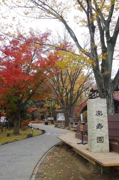 三島市立公園 楽寿園