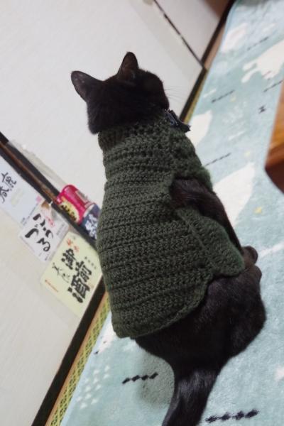 きなみちゃん 猫服 洋服