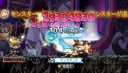 Maple16637a.jpg