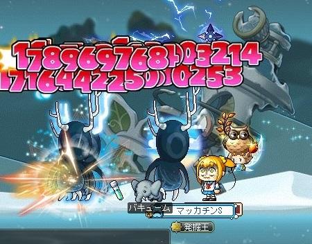 Maple16695a.jpg