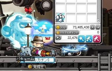 Maple16699a.jpg
