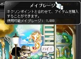 Maple16702a.jpg