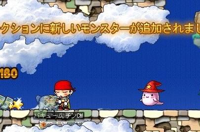 Maple16759a.jpg