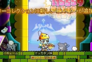Maple16773a.jpg