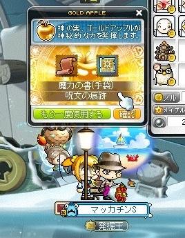 Maple16816a.jpg